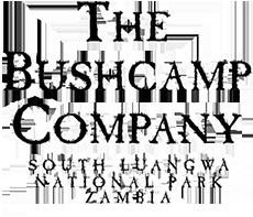 Bushcamp_logo